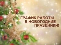 График работы ГБУЗ «Городская больница им. А.П. Силаева г. Кыштым» в новогодние и праздничные дни!